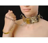 Ошейник золотой с заклепками и цепочкой 5024-8