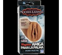 Вагина Noches Latinas 5705-01BXDJ