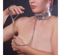 Ошейник серебристый с меховой подкладкой 5014-6