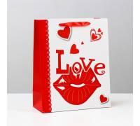 Бумажный пакет «Любовь» - 26 х 32 см