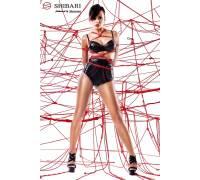Комплект Shinju: лиф, высокие трусики и верёвки для связывания